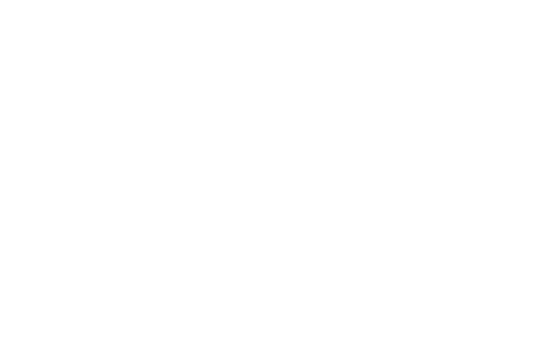Free Spirit Press Retina Logo